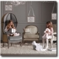 mini-versailles-chair-restoration-hardware-baby-and-child