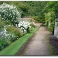 the-gardens-of-downton-abbey