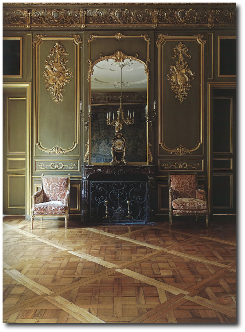 Ambassador to the Netherlands Great Room 500x678 Book Review: Historic Houses of Paris: Residences of the Ambassadors